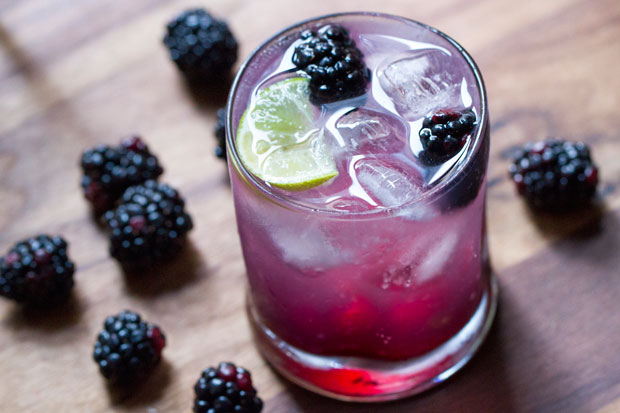The BlackBerry Gin Fizz is a simple drink that gives even the most ...